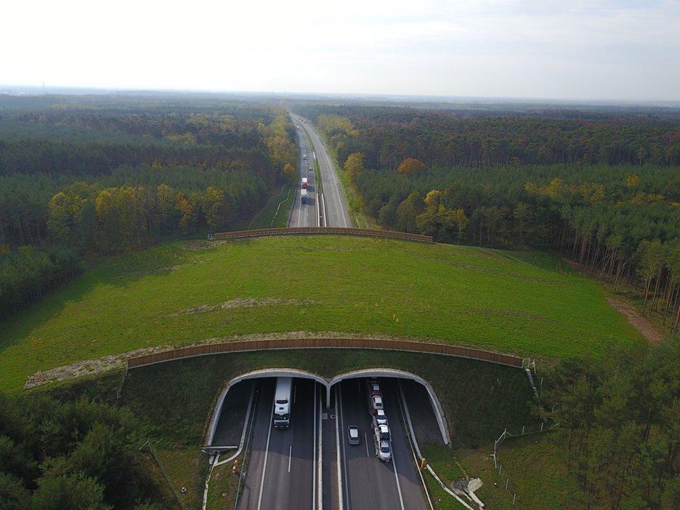 Zelený most pre zver nad diaľnicou D2